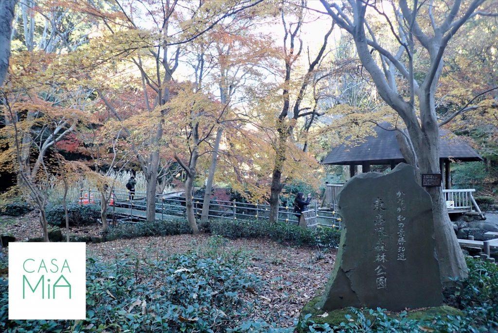 「東高根森林公園」と刻まれた大きな石が置いてある森林