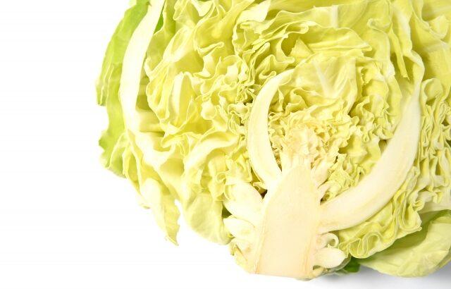 【春野菜の保存方法】春キャベツ、新たまねぎ、新じゃが…冷凍OK?