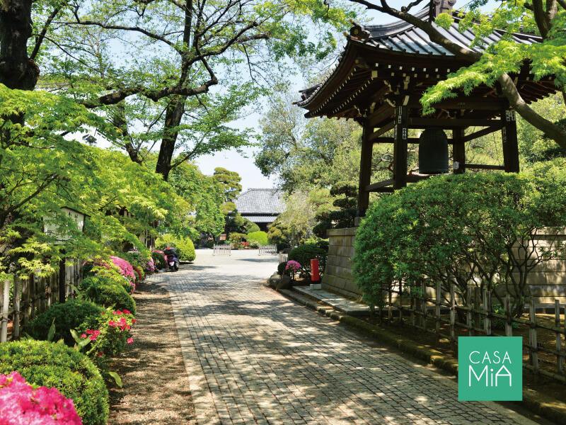 梅ヶ丘ですが、「豪徳寺」も歩いて10分程度です|グリーンコート梅ヶ丘