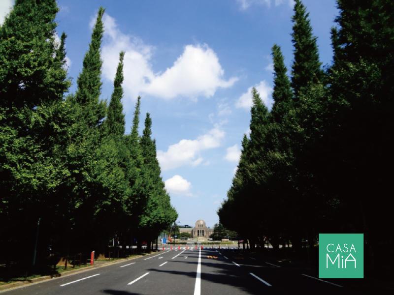 明治神宮外苑の「いちょう並木」も徒歩圏|パインクレスト信濃町